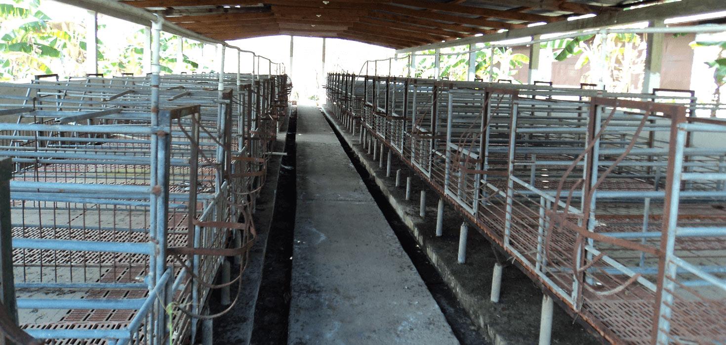 Venta de Local Comercial  ubicado en Sitio Telica Km 4, Catacamas, Olancho, Honduras