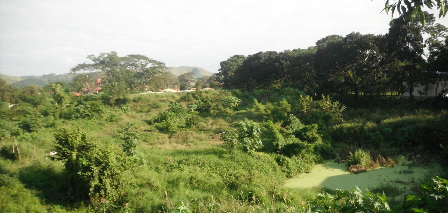 Venta de Lote de terreno ubicado en Sector El Carmen calle hacia los Naranjos, San Pedro Sula, Cortes, Honduras
