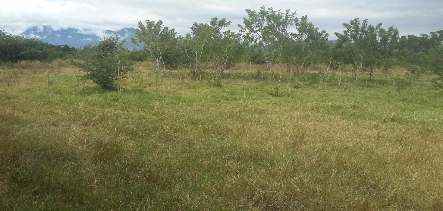 Venta de Lote de terreno ubicado en El Paso de la Canoa, Comayagua, Comayagua, Honduras