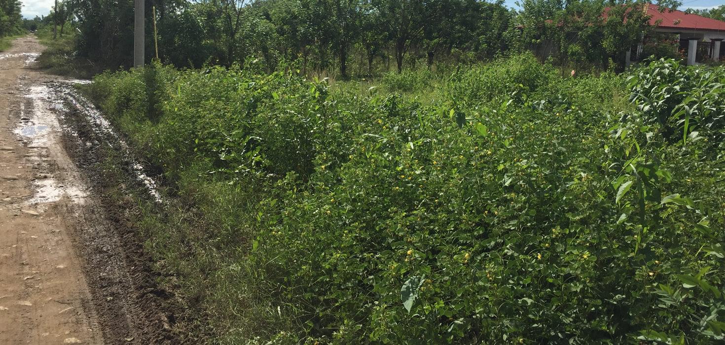 Venta de Lote de terreno en Colonia Satélite bloque H1 , lote 1, Tocoa, Colón, Honduras | Activo Eventual de Banco Atlántida