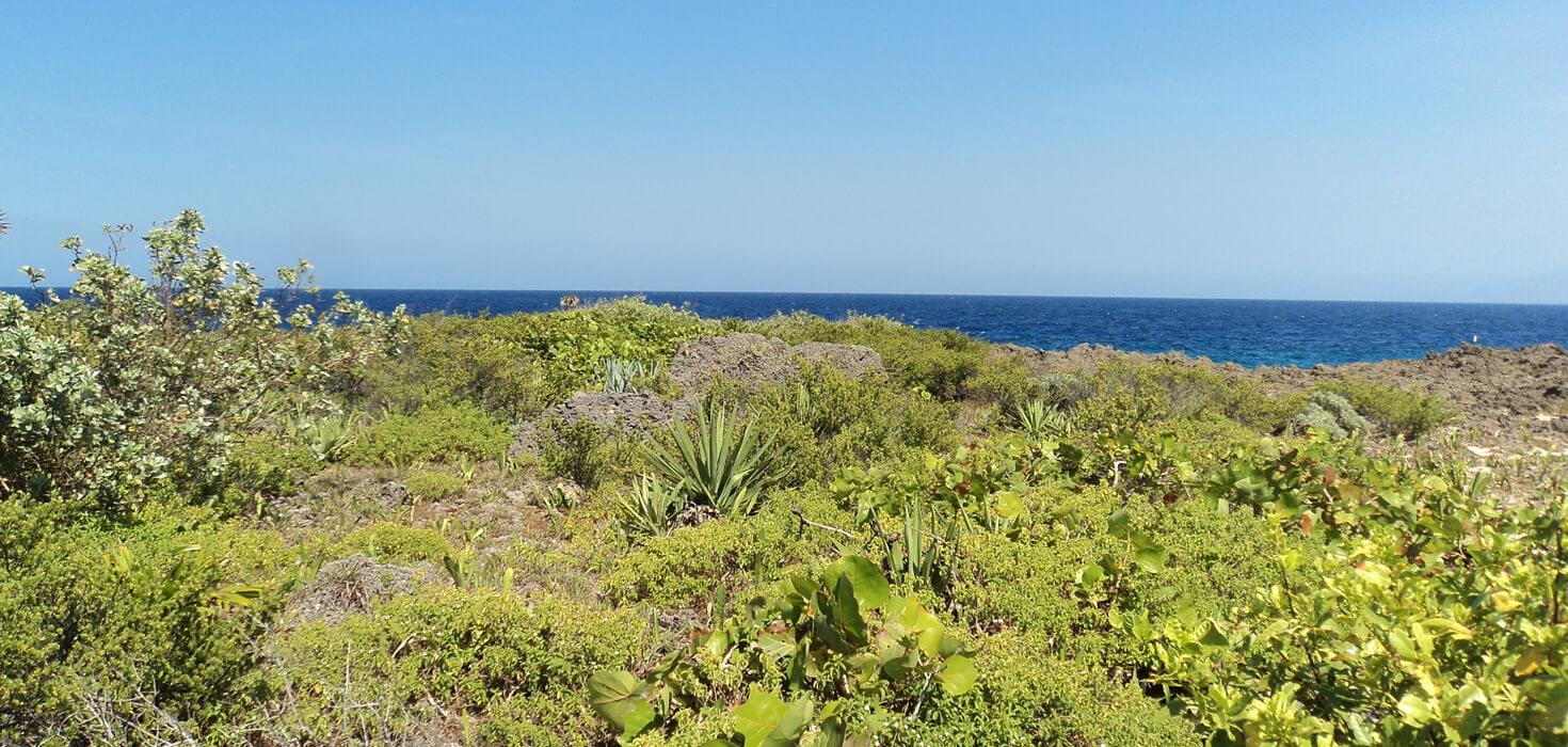 Venta de 12 lotes de terreno en Las Rocas ubicado en Carretera al Aeropuerto, Utila, Islas de la Bahía, Honduras